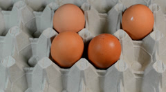 Brown eggs in cardboard packing Stock Footage