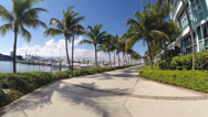 Stock Video Footage of FPV footage of Miami Beach Marina