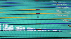 Sportswomen swim in butterfly style during Championship Stock Footage