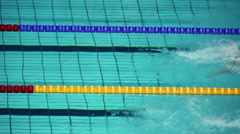 Several sportswomen swim in butterfly style during Championship - stock footage