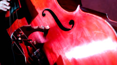 Musician playing contrabass Stock Footage