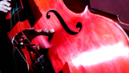 Stock Video Footage of Musician playing contrabass