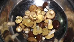 Little wild mushrooms in the bowl Stock Footage