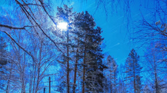 Moonlit Night on the cordon. Stars leave traces. Time Lapse - stock footage