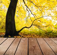 Empty wooden deck table in the park. ready for product montage display. Stock Photos