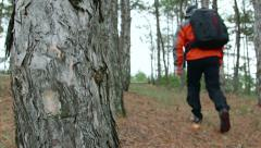 DOLLY: Traveler walking through the forest Stock Footage