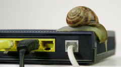 Snail exploring wireless router Stock Footage