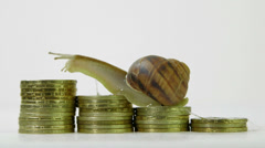 Snail crawling up a stack of coins Stock Footage