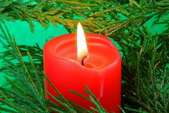 candle in a tree - stock photo