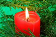 Stock Photo of candle in a tree