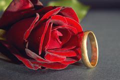 red rose and wedding ring - stock photo