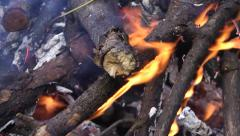 Flaming firewood on a fire Stock Footage