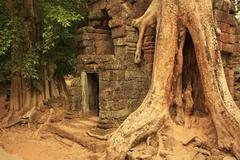 preah khan temple, angkor area, siem reap - stock photo