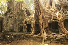 Preah khan temple, angkor area, siem reap Stock Photos