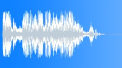 Birds Flying - sound effect