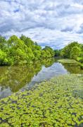Fulda river in aueweiher park  in fulda, hessen, germany Stock Photos