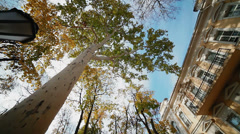 Autumn in the city Stock Footage