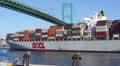 Container Ship Passes Under Bridge Footage