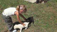Child, Little Girl Playing, Petting Puppy, Dog on Meadow, Children Love Animals Stock Footage