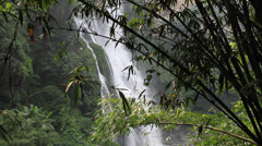bamboo waterfall - stock footage