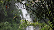 Stock Video Footage of bamboo waterfall