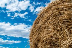 sheaves of straw - stock photo