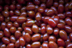 Stock Photo of Baby Plum Tomatoes