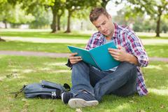 Handsome concentrating student sitting on grass studying - stock photo