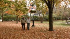 Mature Couple In Park BMPCC Stock Footage