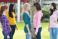 Friends watching college girls having a conflict in park - stock photo