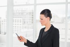 Elegant businesswoman looking at cellphone Stock Photos