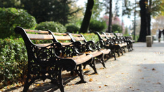Autumn Desolated Benches Stock Footage