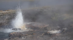 Young Hopeful Geyser in Yellowstone National Park Stock Footage