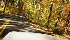 driving autumn - stock photo