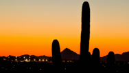 Stock Video Footage of HD 30 p wide Arizona after sunset over valley with tall Saguaro time lapse