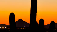 Stock Video Footage of HD 30p tight Arizona after sunset over valley with tall Saguaro time lapse