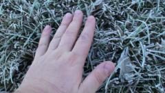 Frosty touch 2 - stock footage