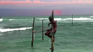Stock Video Footage of Traditional stilt fisherman. Sri Lanka.