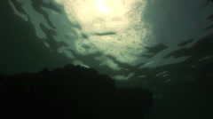 Underwater rock Stock Footage