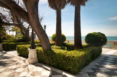 Palm trees and conifers in Cadiz Stock Photos