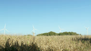 Four Windmill turbines behind corn fields. Stock Footage