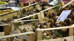 Food Market in Florence (1 of 15) Stock Footage