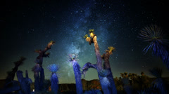 Draconids Meteor Shower 06 Dolly Back Up Joshua Tree Milky Way Timelapse Stock Footage