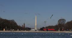 Ultra HD 4K Washington DC Skyline, Monument, National Mall, Double-Decker Bus Stock Footage