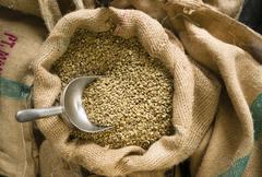 Raw coffee seeds bulk scoop burlap bag agriculture bean Stock Photos