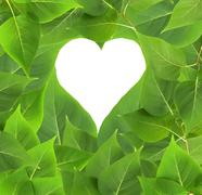 Heart frame in leaves Stock Photos