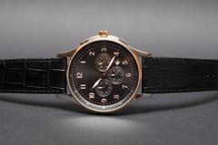 Expensive wristwatch on dark Stock Photos
