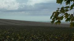 Autumn field Stock Footage