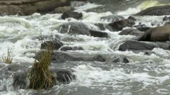 Potomac Rapids Medium Close Up in Fall - stock footage
