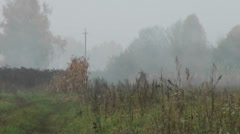 Foggy morning and country road Stock Footage